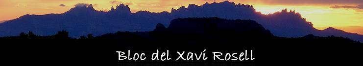 Xavi Rosell