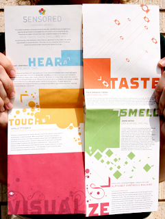 Bold and Beautiful Brochure Designs