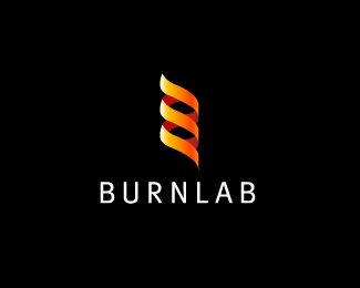 BurnLab Logo Design