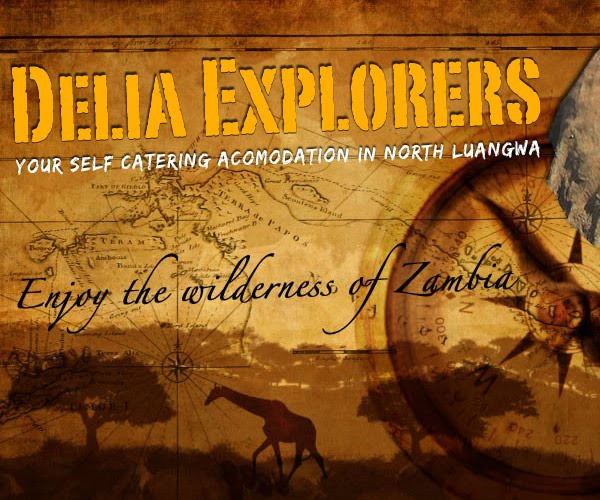 deliaexplorers Web Design
