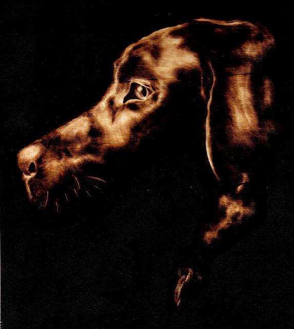 Dog Pyrography