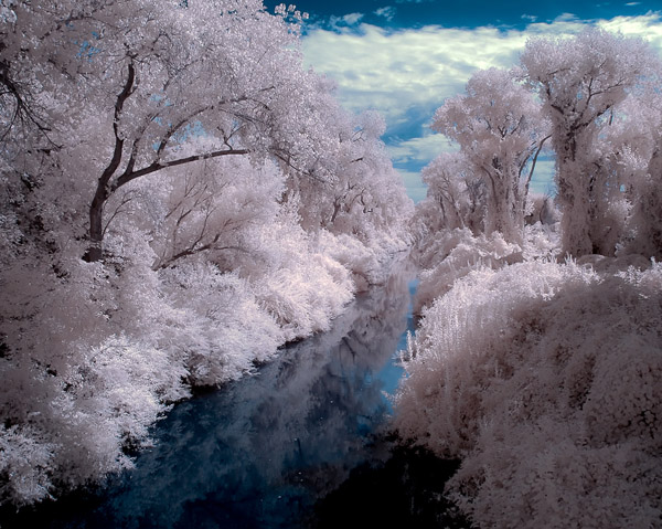 15 Digital Infrared Photography 25 Great IR Shots