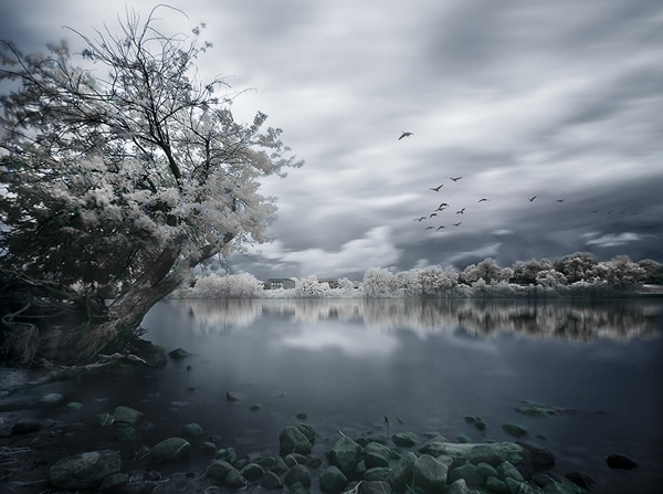 Great IR Shot Seen On www.coolpicturegallery.us