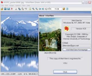 IrfanView 4.20 Portable
