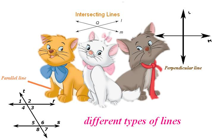Different Types Of Lines : Online math homework help