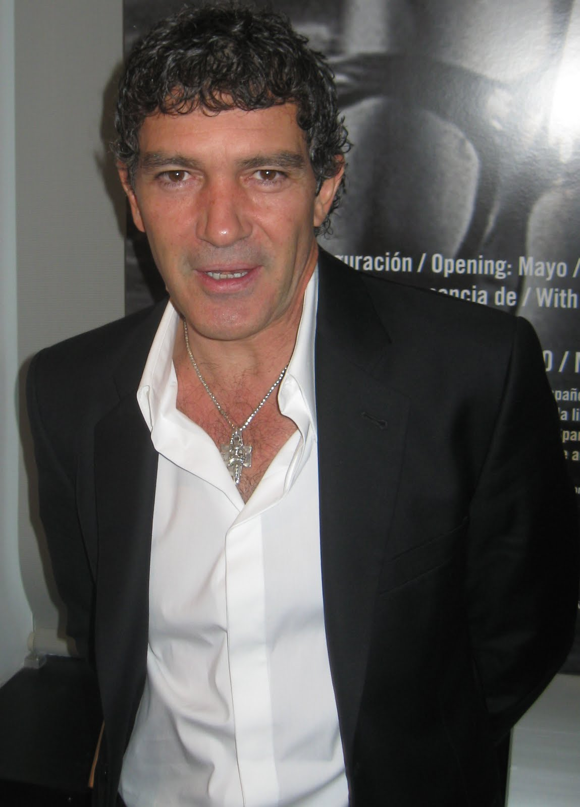 Antonio Banderas Goes From Animated Puss to Motivated Curator of a ... Antonio Banderas