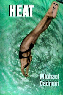 Cover of Heat by Michael Cadnum