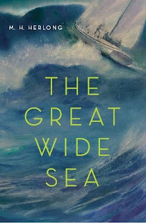 Book Cover Art for The Great Wide Sea by M. H. Herlong
