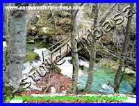 Nº 10 Puente de Madera Grande. . Reserva Natural del Río Urederra. Parque Natural Urbasa. Ruta de las Cascadas desde Baquedano. Centro de Turismo Rural y Agroturismo  Casa Rural Navarra Urbasa Urederra. Ven a conocernos… te sorprenderás