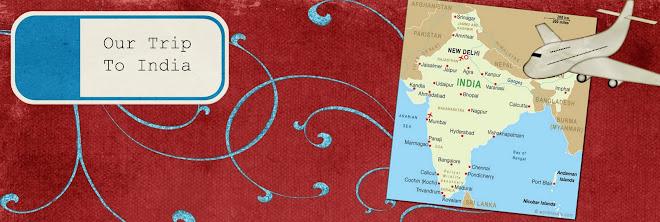 India 2010 Trip