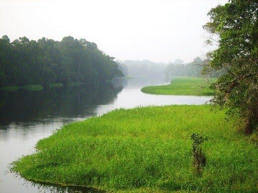 Nyong - Cameroun