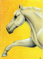 coloured pencil horse Shake a Paw? Copyright Jennifer Rose Phillip