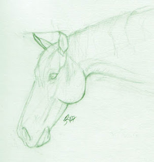 Horse Sketch by Jennifer Phillip