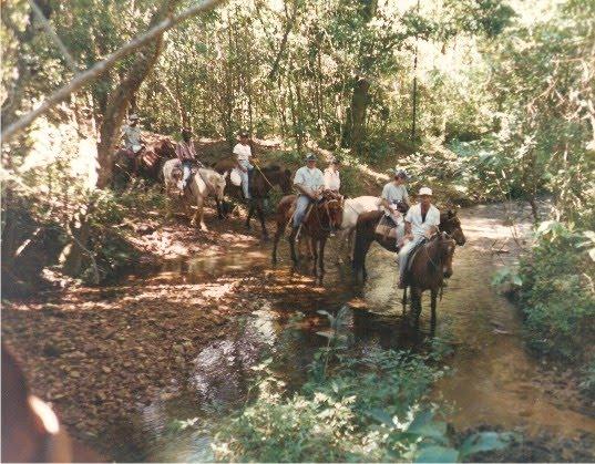 Flávio Madeira - Cavalgada na Serra da Canastra