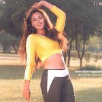Southindian Sexy Star Simran Hot Photos
