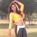 Southindian Sexy Star Simran Hot Photos