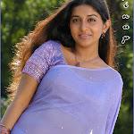 Southindian Hot Actress Meera Jasmine