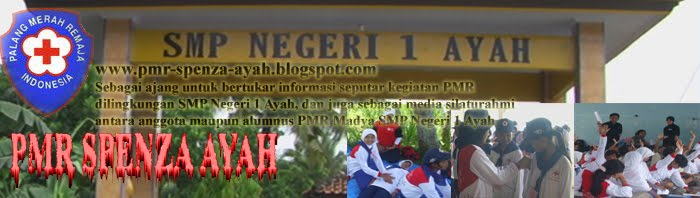 Blog PMR Spenza