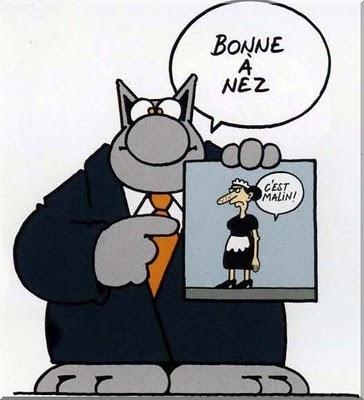 EN CEDEBUT D'ANNEE 2011 JE VOUS SOUHAITE.... : Le_chat_bonne_a_nez%5B1%5D