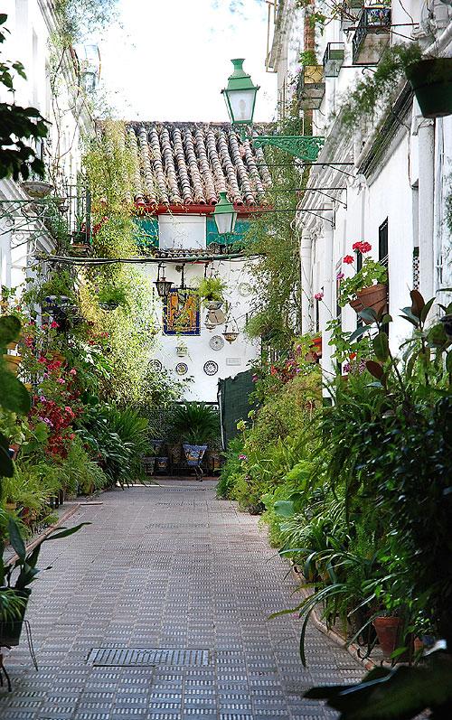 La foresta incantata il barrio di triana l 39 anima for Calle colorate non fioriscono