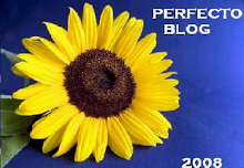 Premio Perfecto Blog 08
