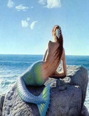 Playa de los Ecos Sirena2