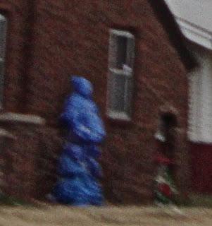 A blue ninja tree?