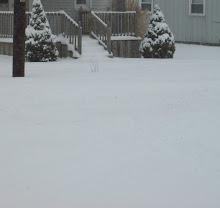 Snow in IN!