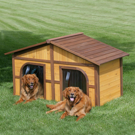 Chamba iraheta casas de lujo para perros - Casa de perro grande ...