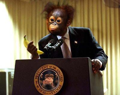monkey president