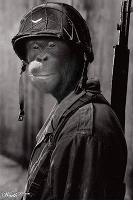 Monkey soldier