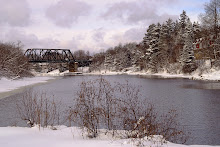 Trainbridge Over Hunter's Bay