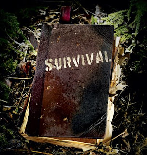 survival 425 How to Survive (Almost) Anything 14 Survival Skills