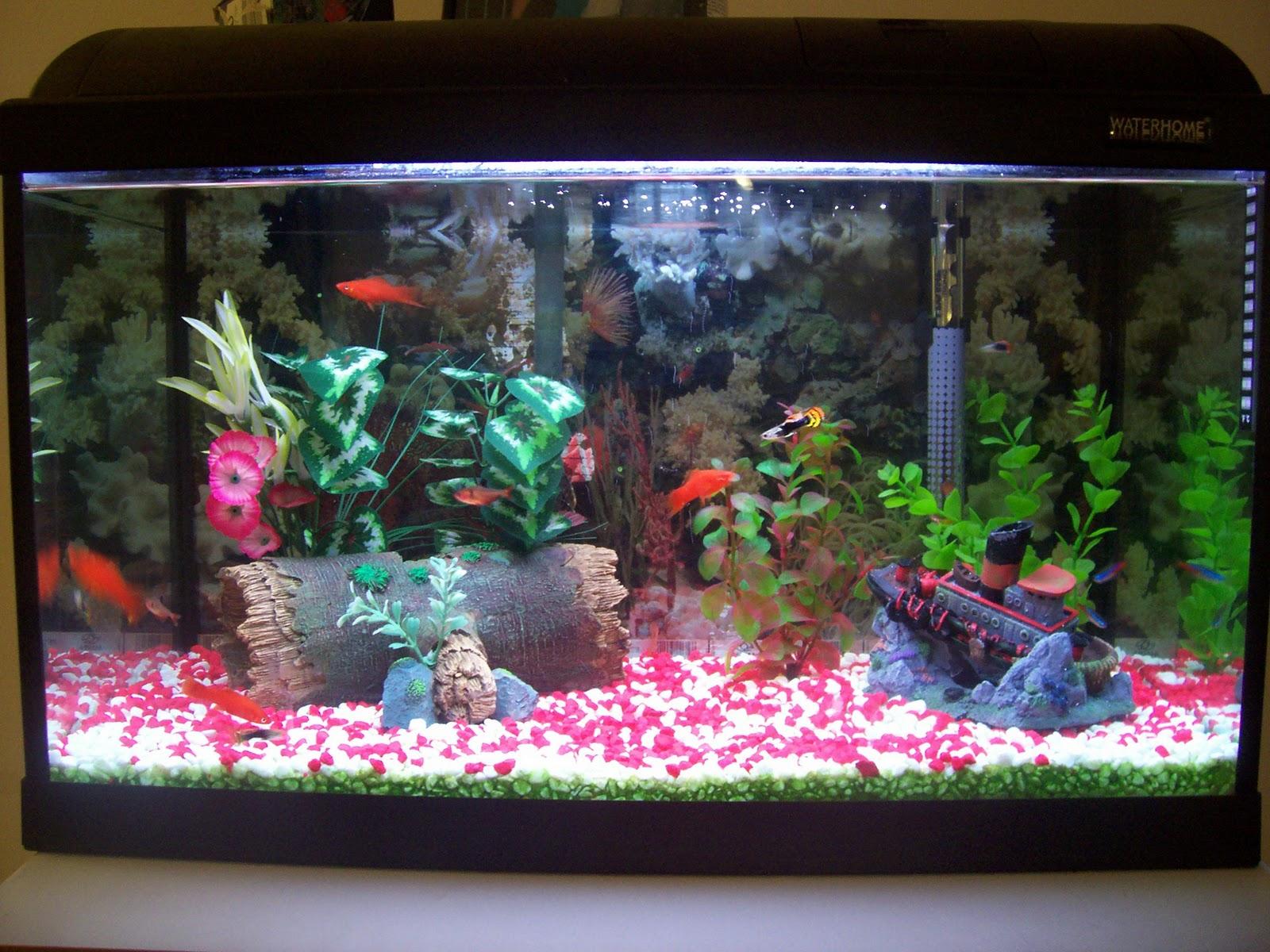 Декор в аквариуме своими руками фото 537