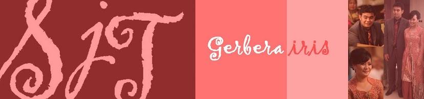 gerberairis