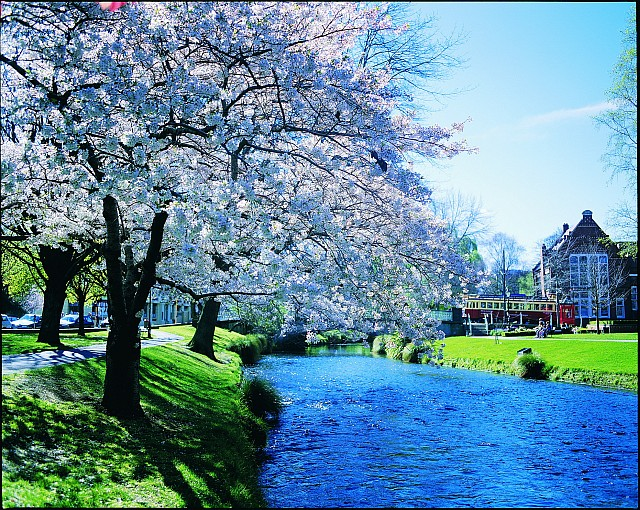 Welcome to christchurch the garden city onlinetravelsites for Landscape gardeners christchurch