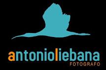 FOTOGRAFIA NATURALEZA Y OTROS