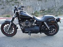 Harley FXDX 99