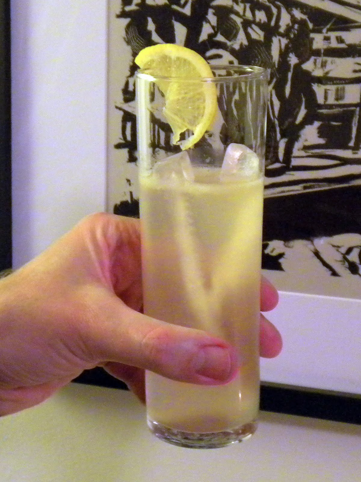 Cocktails in Charleston: Apricot Anise Collins