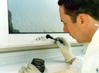 dna fingerprinting in will still be popular in 2016