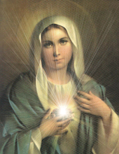 Nossa Senhora do Sagrado Coração, Rogai por nós!