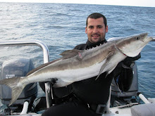Cobia