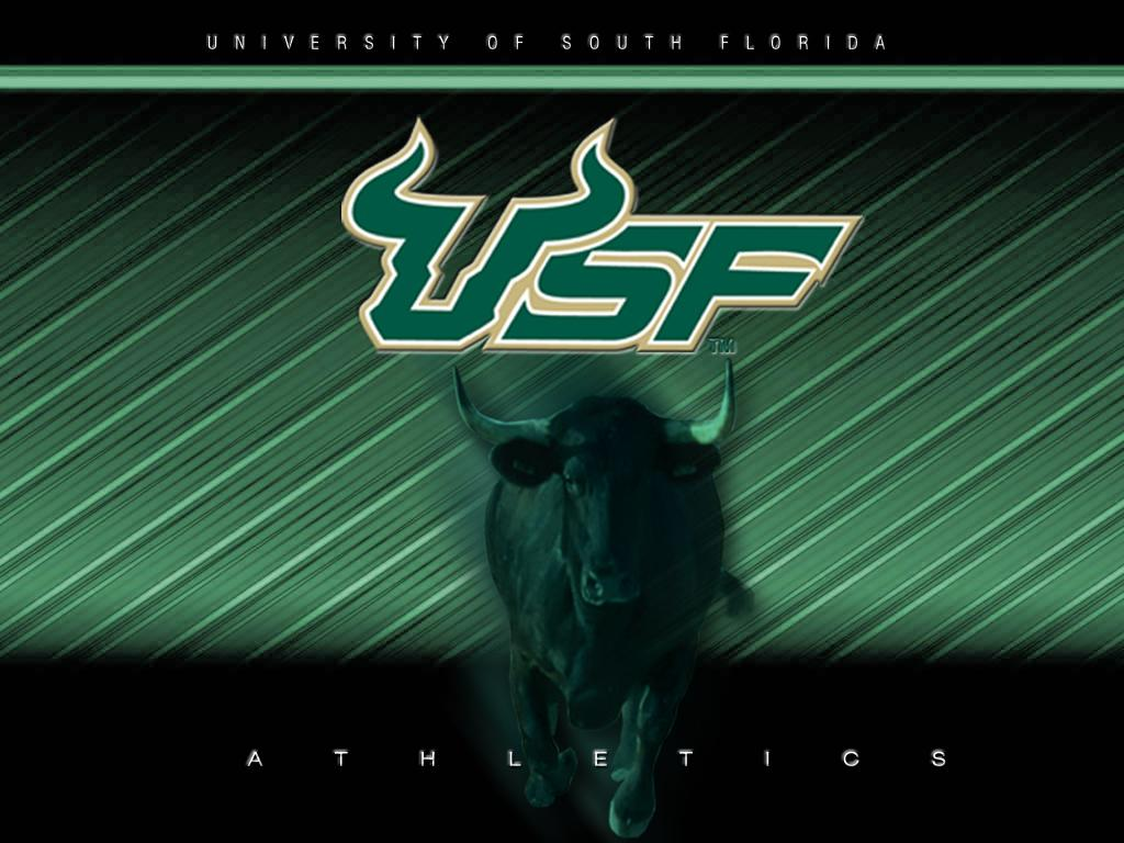 Usf Bulls Wallpaper Free Wallpaper Usf Xp Bmw Vista Toolbar