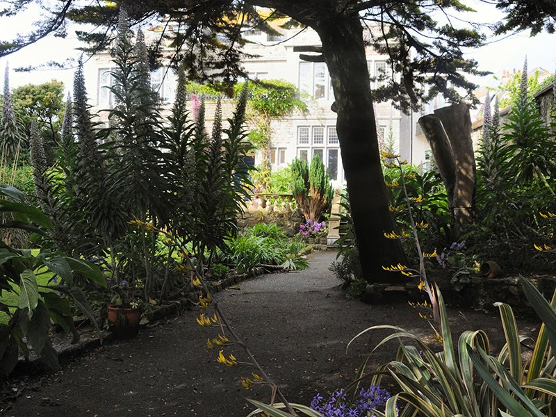 Trewyn Gardens St Ives Cornwall Garden Ftempo