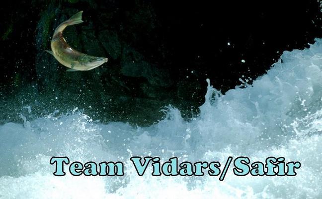 Team vidars fiske