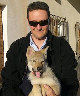 Emba von der Wolfsranch