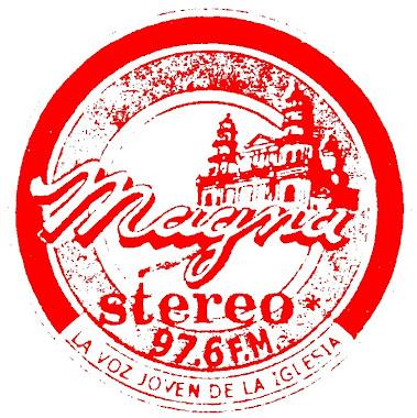 Magna Stereo