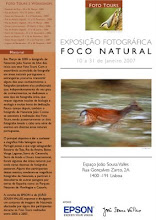 FOCO NATURAL - LISBOA