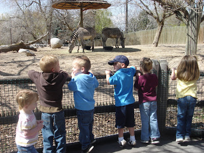narrative essay on a visit to the zoo Award-winning reading solution with thousands of leveled readers, lesson plans, worksheets and assessments to teach guided reading, reading proficiency and comprehension to k-5 students.
