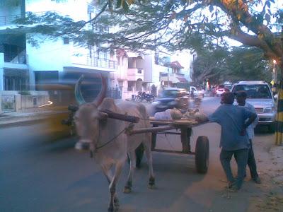 india development